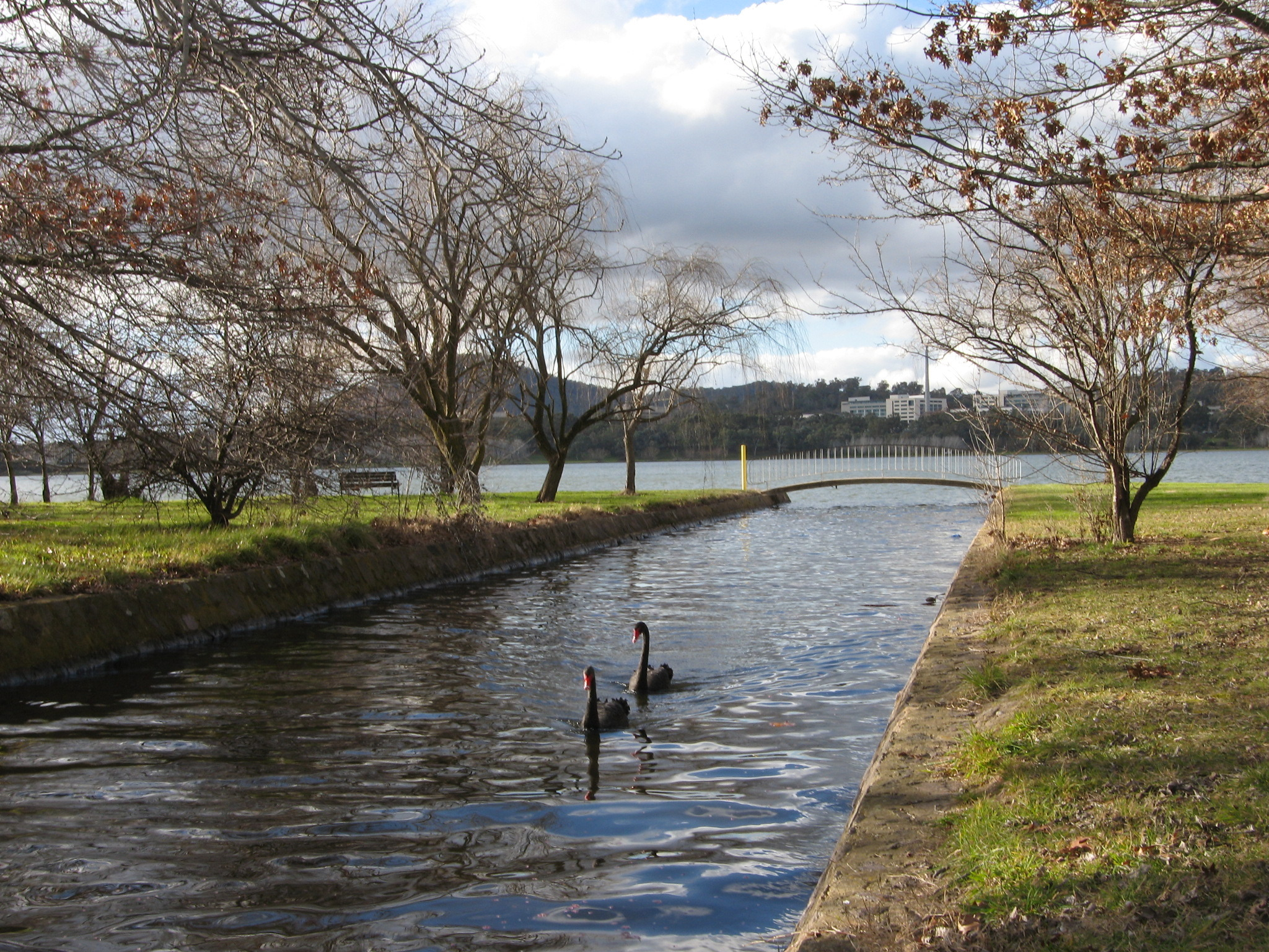 Canberra's Picturesque Winter